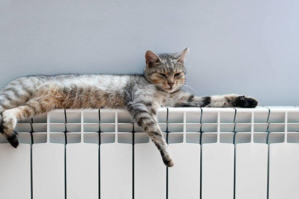 Adopter un chauffage respectueux de l'environnement
