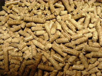 combustible granules de bois