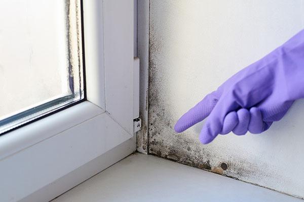 Combattre l'humidité dans une maison ancienne