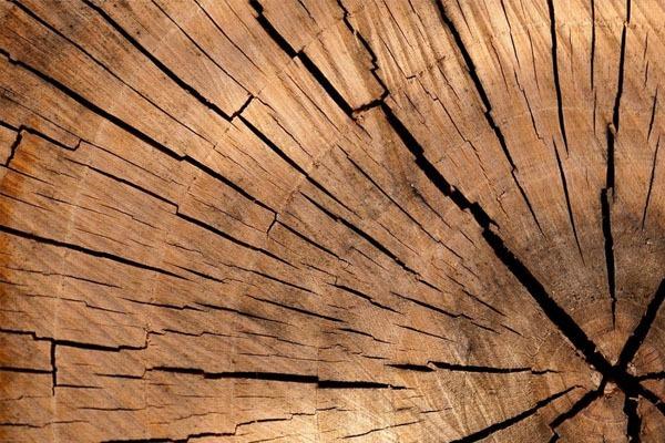 Isolation bois